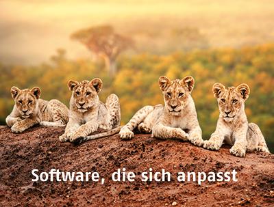 IB&T Software GmbH