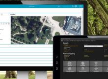 Mit der Software ProOffice Baumkataster kann der Baumbestand digital vor Ort über Handy oder Tablet erfasst werden. Foto: AED-SYNERGIS GmbH