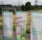 Die Stadtwerke Gronau setzen zur Nutzung ihrer GIS-Daten auf das WebGIS GC OSIRIS. Damit lassen sich Daten visualisieren, editieren, selektieren und Netzdatenabfragen über verschiedene Gewerke hinweg realisieren. Foto: GIS Consult GmbH