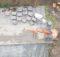 Urgeländeaufmaß für ein Mehrgenerationenhaus in Neuenrade im Märkischen Kreis. Foto: Straßen- und Tiefbau GmbH