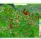 Das Waldinformationsportal Waldinfo.NRW basiert auf der map.apps-Technologie von con terra und ging Ende 2018 an den Start. Mit dem Portal sollen Waldbesitzende individuelle Anpassungsstrategien ausarbeiten können. Foto: con terra GmbH