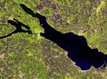 Ein Sentinel-2-Satellitenbild vom Bodensee. Foto: European Space Agency (ESA)